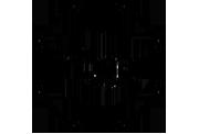 Triggar_Logo